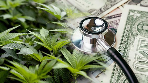 Cannabis business Financial Health