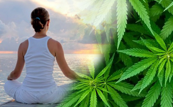 cannabis and a woman meditate