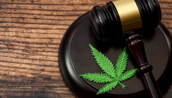 marijuana-leave-and-hammer
