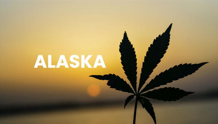 medical-marijuana-alaska