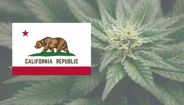 medical-marijuana-california