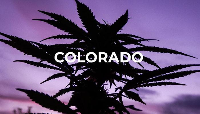 medical-marijuana-colorado